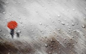 Wallpaper autumn, glass, girl, drops, rain, dog, umbrella, silhouettes
