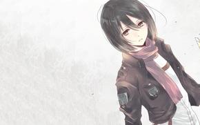 Picture Anime, 1920x1080, Attack on Titan, Mikasa Ackerman
