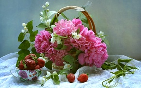 Picture bouquet, dragonfly, berries, still life, peonies, Jasmine, basket, strawberry