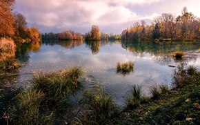 Picture autumn, trees, pond, Savoy