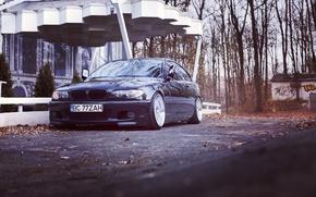 Picture BMW, autumn, stance, e46, 3series, 325ci