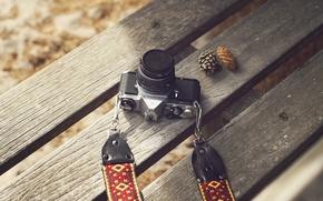 Picture camera, autumn, Pentax