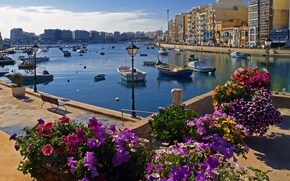 Picture the sky, flowers, home, boats, promenade, Malta, St Julian's