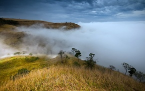 Picture mountains, nature, fog