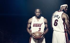 Picture the ball, nba, Famous Stars Dwayne Wade, spalding, Miami heat, basketball, heat, Lebron James