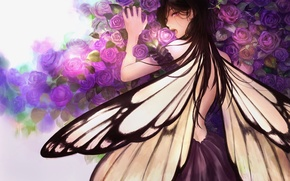 Picture flowers, butterfly, anime, art