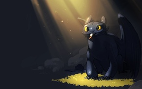 Picture fish, art, toothless, how to train your dragon, toothless, how to train your dragon
