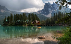 Picture forest, Alberta, Canada, Lake louise