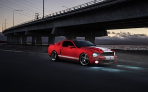 Picture Mustang, Ford, Shelby, GT500, Muscle, Light, Red, Car, Front, Sunset, Collection, Aristo
