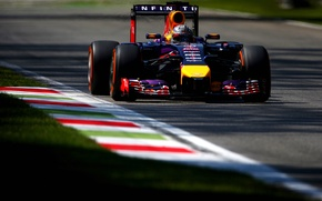 Picture Grass, Shadow, Formula 1, Red Bull, Vettel, The curb