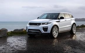 Picture Range Rover, Evoque, range Rover, 2015, Dynamic, HSE