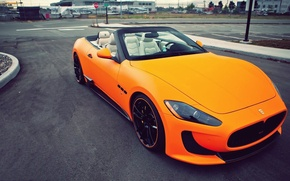 Picture car, colors, beauty