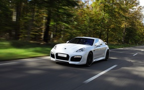 Wallpaper road, Porsche, white, speed, Wood