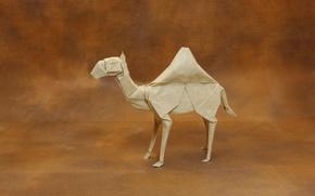 Wallpaper paper, origami, Dromedary Camel