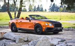 Picture Bentley, Continental, Bentley, Mansory, GTC, 2015, continental