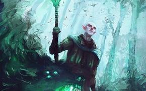 Picture elf, MAG, dragon age, Dragon Age: Inquisition, solas