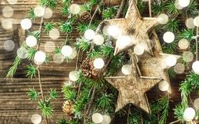 Picture branches, glare, stars, bumps