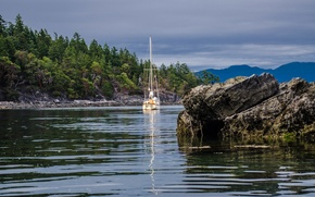 Picture forest, stones, shore, yacht