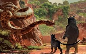 Picture Scarlett Johansson, cinema, Disney, snake, bear, trees, animals, nature, rocks, movie, panther, film, moss, vegetation, …