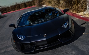 Picture Lamborghini, black, Aventador