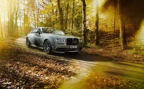Picture car, forest, Rolls Royce, tuning, rolls Royce, Wraith, Spofec