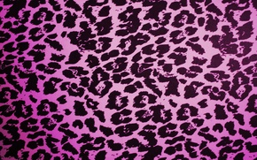 Picture Leopard, Pink, Texture