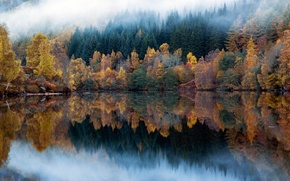 Picture autumn, forest, reflection, nature, lake