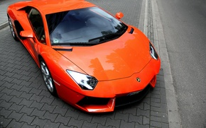 Picture orange, Lamborghini, supercar, supercar, orange, aventador, lp700-4, Lamborghini, aventador