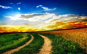 Picture field, the sky, grass, clouds, landscape, sunset, nature, road