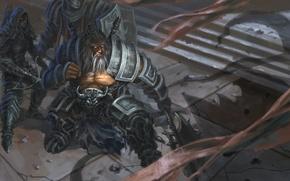 Picture diablo 3, demon hunter, barbarian, reaper of souls