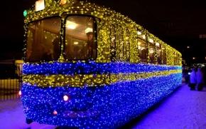 Picture lights, tram, garland