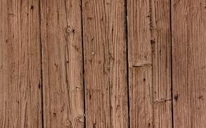 Wallpaper pattern, wood, Brown