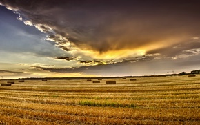Picture summer, the sky, clouds, Field, August, summer, sky, field, clouds, august