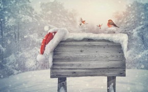 Picture winter, snow, landscape, nature, new year, Christmas