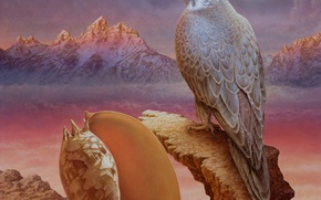 Picture mountains, the moon, picture, shell, Falcon