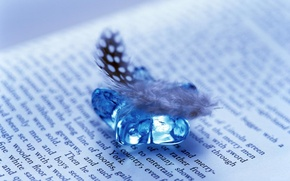 Wallpaper mood, book, notebook, text, the story, a feather, words, Shine, souvenir, the inscription