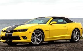 Picture sea, Chevrolet, Camaro, Chevrolet, Camaro, Convertible, 2013, cabriolet