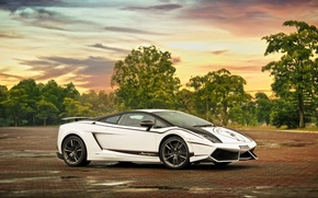 Picture white, the sky, clouds, trees, white, lamborghini, side view, Lamborghini, Gallardo, lp570-4, Superleggera, gallardo superleggera