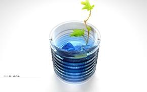Picture plant, minimalism, Glass