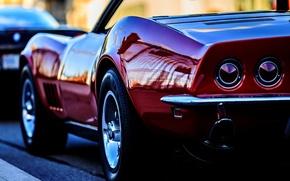 Picture Corvette, Chevrolet, Chevrolet, Corvette, Stingray, the background, Backwave, Stingrey