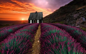 Picture landscape, sunset, mountains, nature, house, vegetation