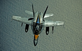 Wallpaper the plane, f/a 18, hornet