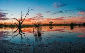 Picture Australia, Campbell's Swamp, Lake Wyangan