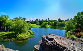 Picture the sky, trees, the city, rock, pond, Park, home
