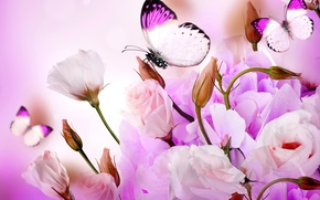 Picture flowers, collage, butterfly, petals