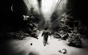 Wallpaper child, boy, one, snow, trail, forest