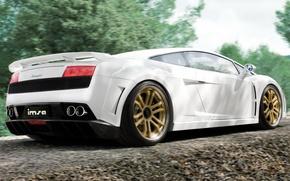 Picture machine, Wallpaper, Lamborghini, car, wallpaper, supercar, Gallardo, cars, Lamborghini, Suite, imsa, Gallardo