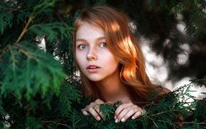 Picture girl, surprise, sponge, redhead, Stepan Gladkov