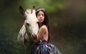 Picture background, mood, friendship, girl, friends, donkey