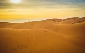 Picture sand, the sun, sunset, stay, desert, desert, sunset, sun, sand, Vietnam, Vietnam, relaxation, MUI ne, …